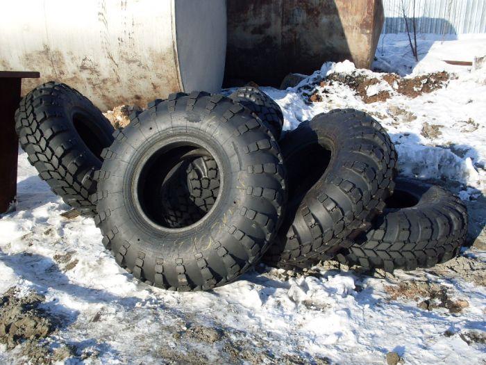Где купить шины мтз 80 кама и цена   СПРАВКА КИРОВА.